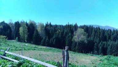 Torkul Yaylası'nın genel manzarasını gösteren bir fotoğraf.